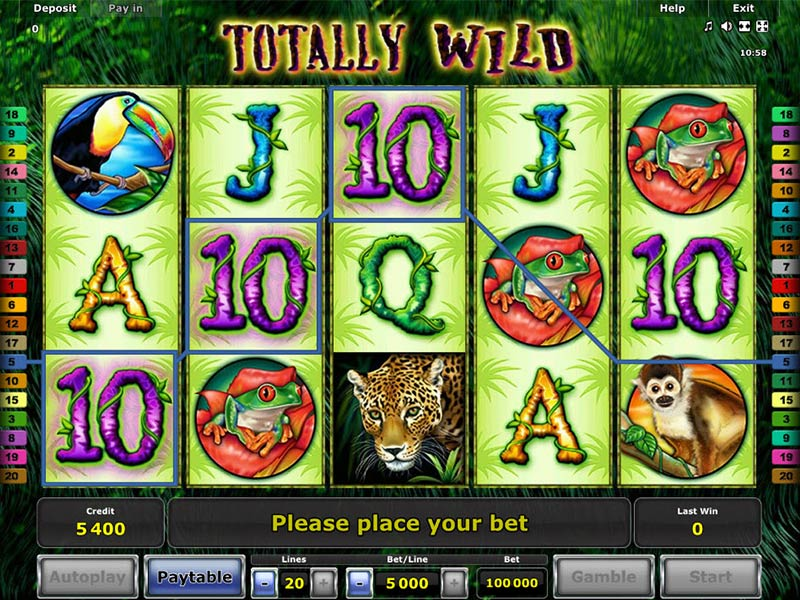 Simply Wild slot game